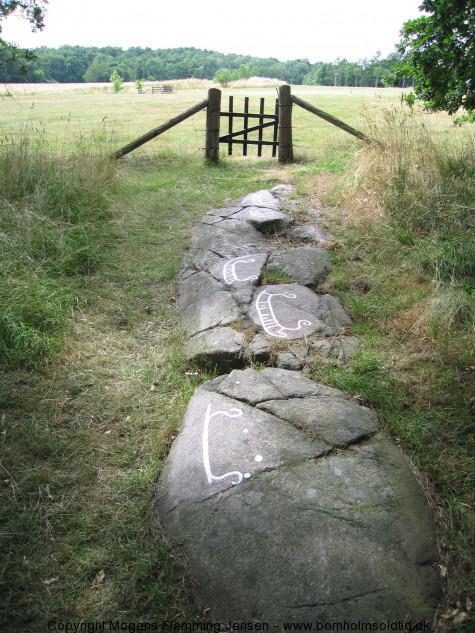 Brogård bornholmsoldtid.dkIMG_1874